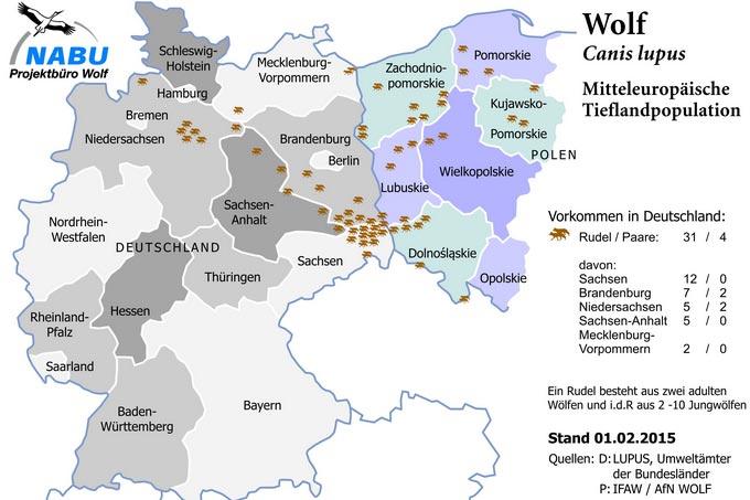 Wölfe In Brandenburg Karte.Wölfe Nabu Brandenburg