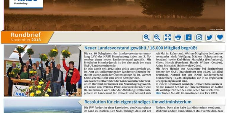 NABU Brandenburg - Rundbrief November 2018