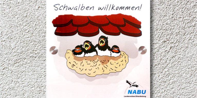 bewerbung schwalbenfreundliches haus nabu brandenburg. Black Bedroom Furniture Sets. Home Design Ideas