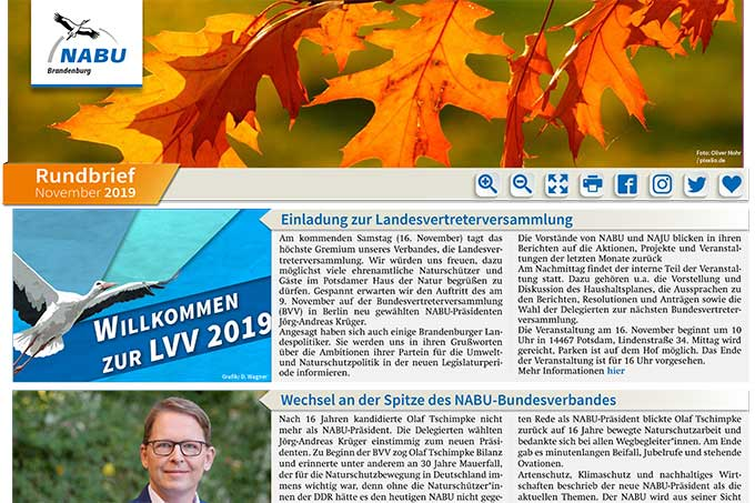 NABU Brandenburg - Rundbrief November 2019